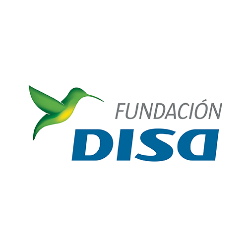 Fundacion DISA